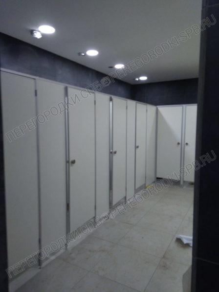 santehnicheskie-tualetnye-peregorodki-v-trc-merkuriy-4