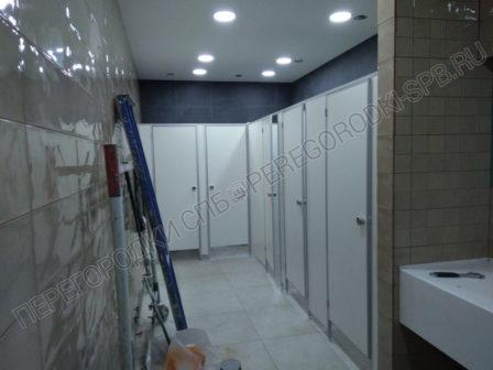 santehnicheskie-tualetnye-peregorodki-v-trc-merkuriy