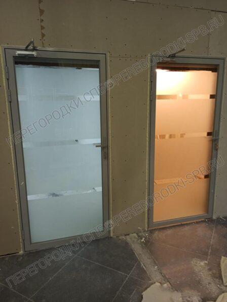dveri-iz-zakalennogo-stekla-s-peskostruynoy-obrabotkoi-2