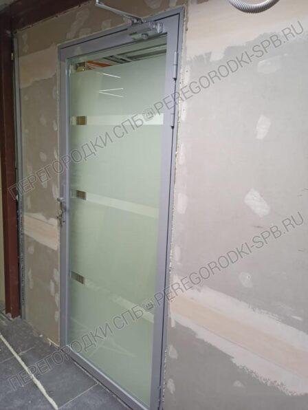 dveri-iz-zakalennogo-stekla-s-peskostruynoy-obrabotkoi-3