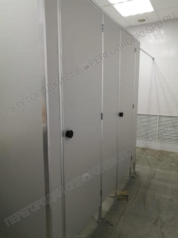 kabinki-dlya-tualeta-iz-dsp
