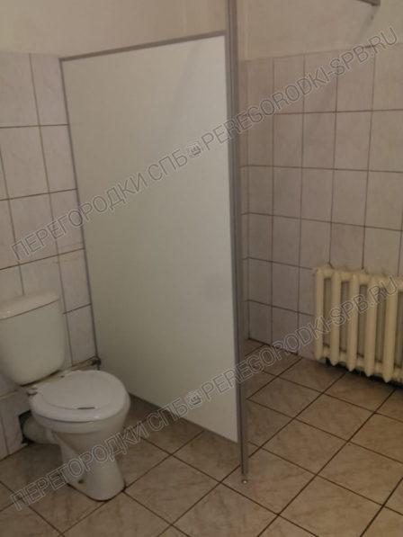 okno-dveri-ekrany-i-peregorodki-v-sanuzel-6