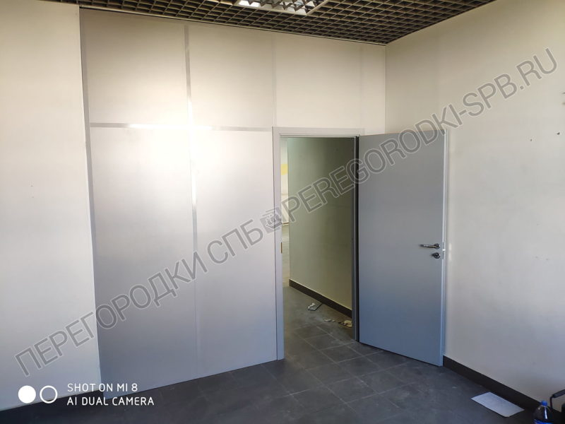 peregorodka-s-dveryu-dlya-ofisa-1