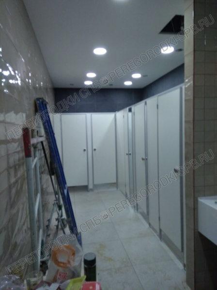 santehnicheskie-tualetnye-peregorodki-v-trc-merkuriy-3