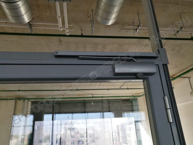 steklyannye-dveri-dlya-biznes-tsentra-5